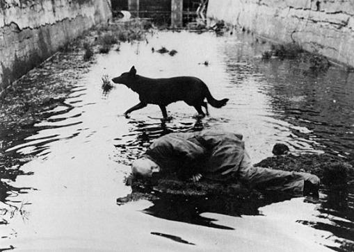 Still from Andrei Tarkovsky, Stalker, 1979